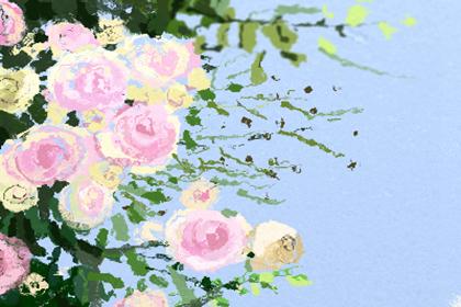 壁纸 成片种植 风景 花 植物 种植基地 桌面 420_280