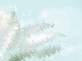 十二月生辰石是什么 象征什么