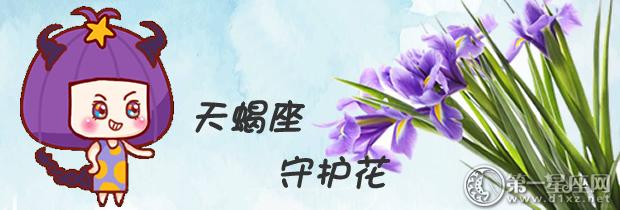 给天蝎座带来财运,事业,星座,爱情的花-第一星座网好运v财运图片
