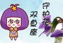 双鱼座守护花