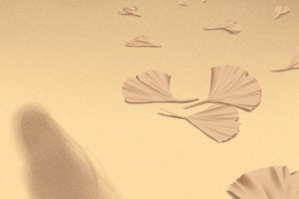 命理分析风水罗盘:家里风水怎么调 最基础的风水讲究 【大师指南】