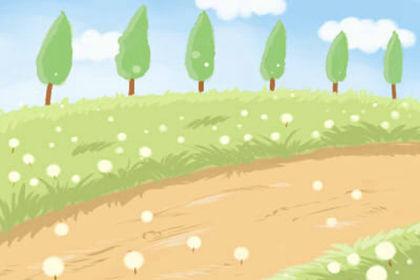 水仙花的花期有多長 形態特徵有哪些