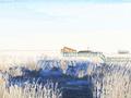 小寒吹來花信風 二十四番花信風的開始