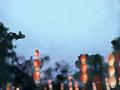 中国十大殿堂级歌手都有谁