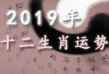 2019十二生肖运势