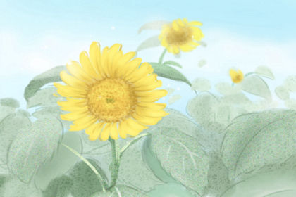 节日大全 花婆节是哪个民族的节日