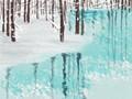 101个禅经佛理的经典故事:水中倒影