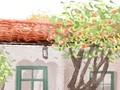佛诞盛典,浴佛节是哪天?每年农历四月八