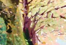茂腔文化了解,茂腔发源地是哪里