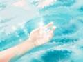代表美好的初恋:藤本蔷薇图片欣赏