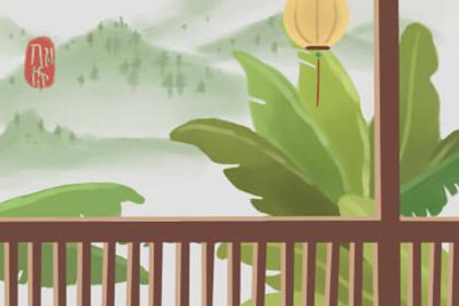 室内植物摆放风水 在家种花草的讲究