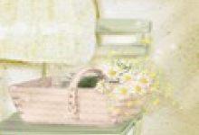 家居风水植物:住宅仙人柱的摆放方法