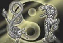 推背图第十五象:大祖崛起拯救民