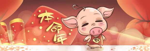 猪年本命年