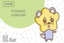 解答:鼠年八月出生人的性格特征
