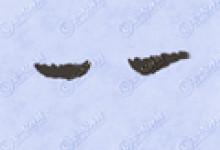 眉毛图片 十二种眉型图 男生女生必看眉形图