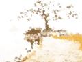 诡魅塔罗每日运势 1月19日12星座运势播报
