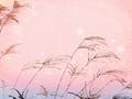 春分諺語,關于春分的諺語大全