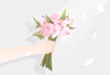 解析:妇女节送什么花