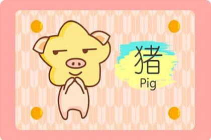 属猪的佩戴什么能转运 送给属猪本命年礼物