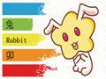 屬兔的和什么屬相不合 相克 犯沖
