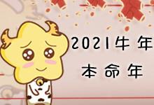2021属牛本命年