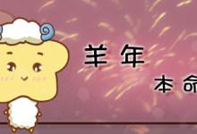 羊年本命年
