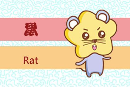 六鼠贵命是什么意思