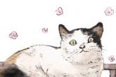 诗意一点的宠物名 美美哒
