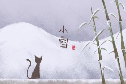 小雪节气的特征有哪些