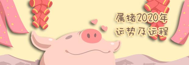 属猪2020年运势及运程