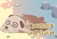 屬狗2020年運勢及運程