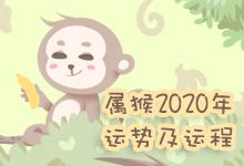 属猴2020年运势及运程