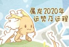 属龙2020年运势及运程
