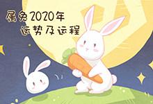 属兔2020年运势及运程
