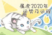 属虎2020年运势及运程