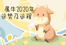 属牛2020年运势及运程