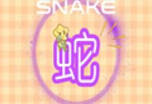 属蛇今年婚姻 属蛇和属蛇的婚姻如何