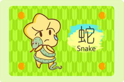 蛇和羊合不合