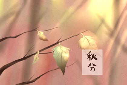 秋分后第一个节气 秋分是什么意思