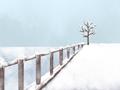 立冬是哪个季节的节气