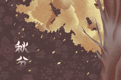 秋分吃什么食物补气血 补水养生
