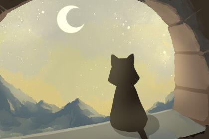 2019年国际猫咪日是几月几日 猫咪的种类