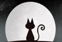 男人梦见猫是好事吗