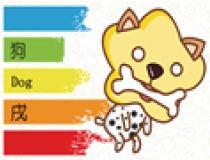 彩虹条纹十二生肖图