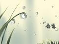 24節氣的白露的來源 天氣有何特點