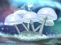 什么是猎户座流星雨 几月几日 21日极大