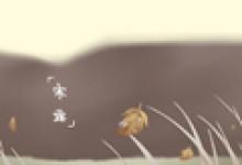 寒露当天吃什么好 有哪些民间传统食物