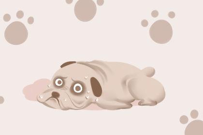 一个女人梦见一只狗咬了她的左臂 这有什么寓意