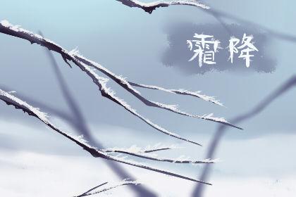 霜降节气是农历几月初几2019 风俗有哪些